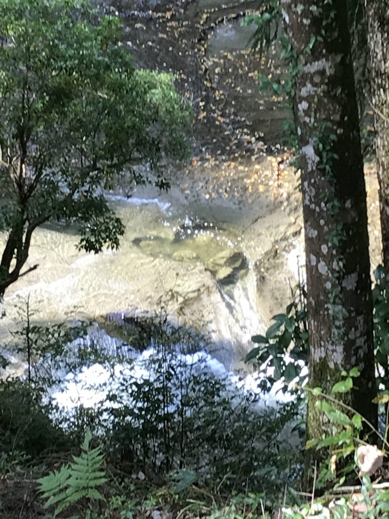 濃溝の滝9