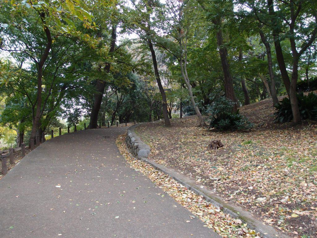 戸山公園箱根山3