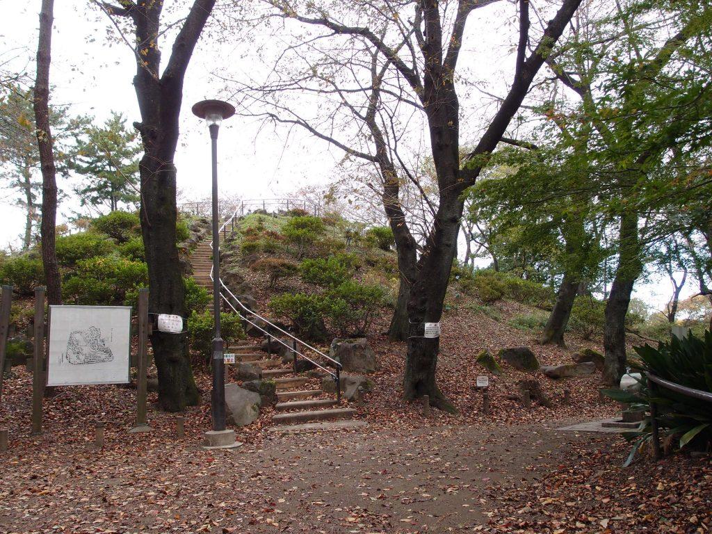 戸山公園箱根山4