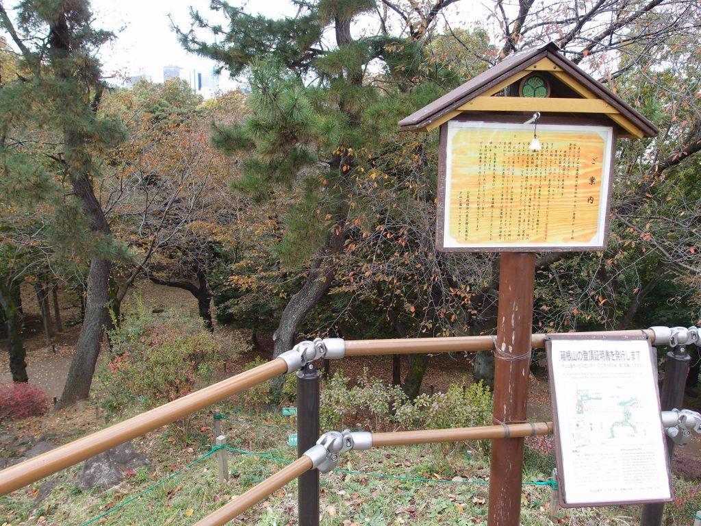 戸山公園箱根山5