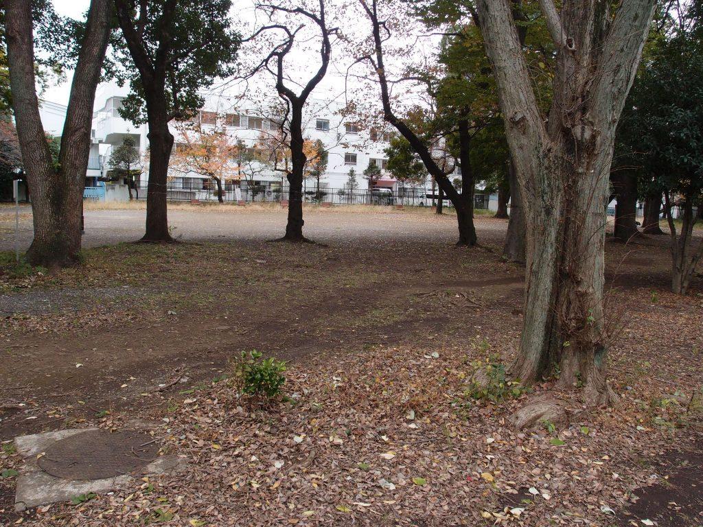 戸山公園箱根山7