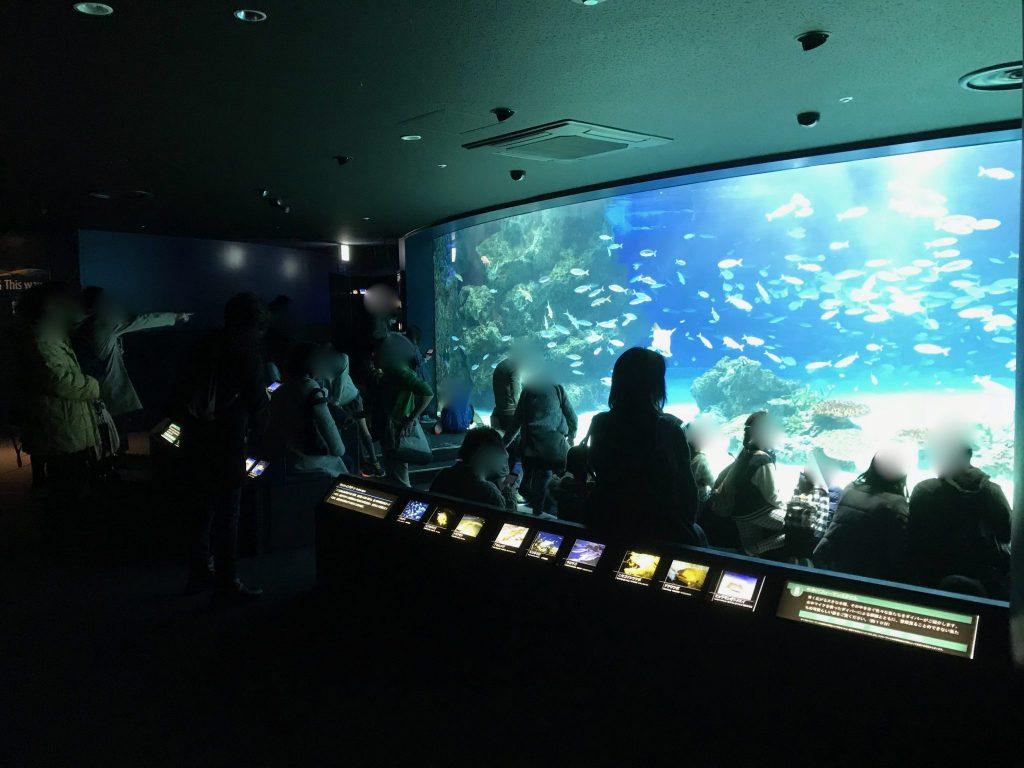 サンシャイン水族館8