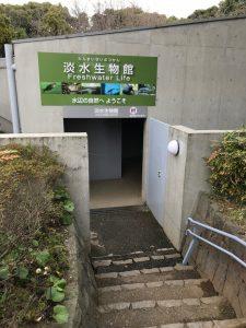葛西臨海水族園27