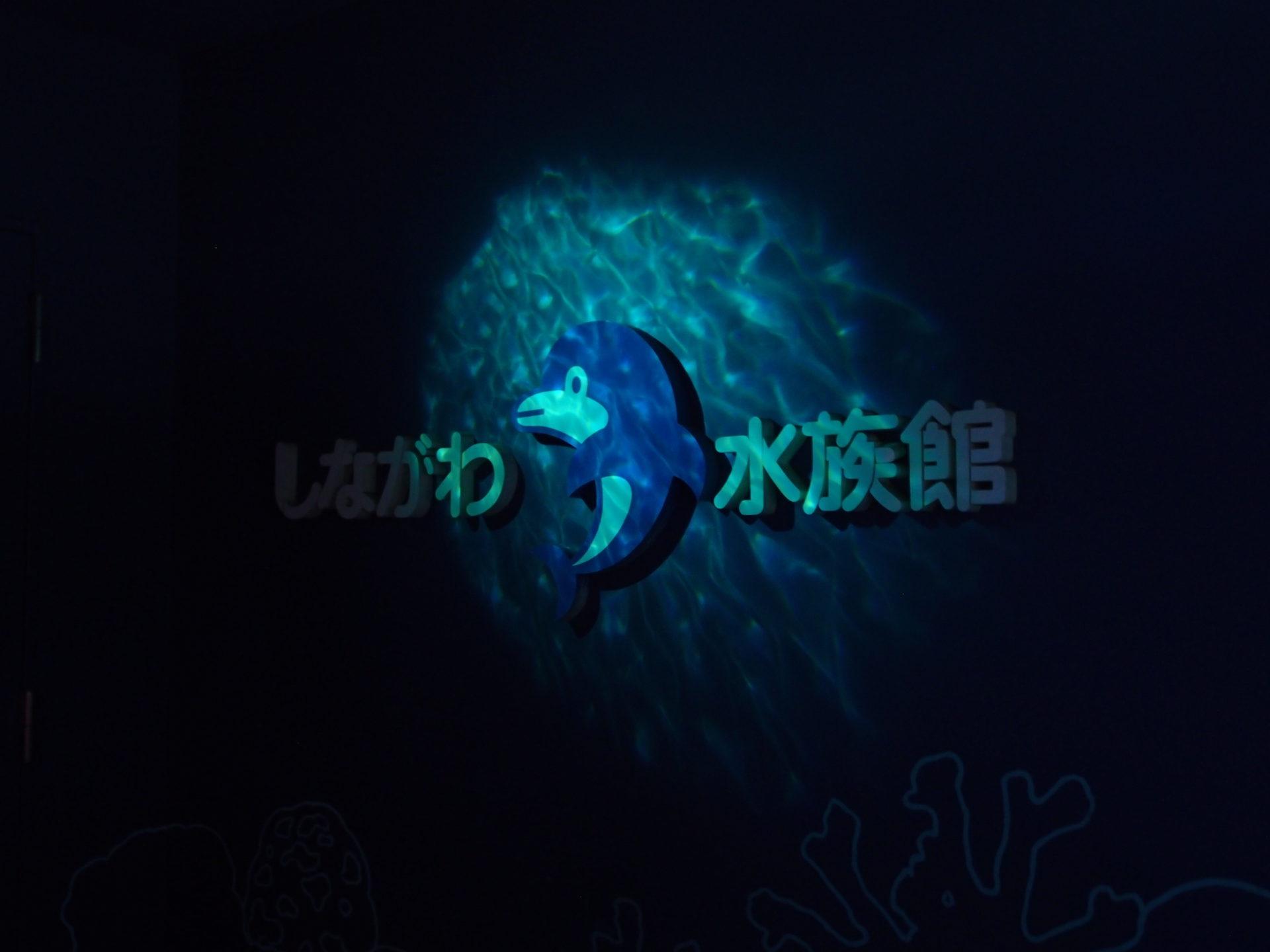 しながわ水族館7